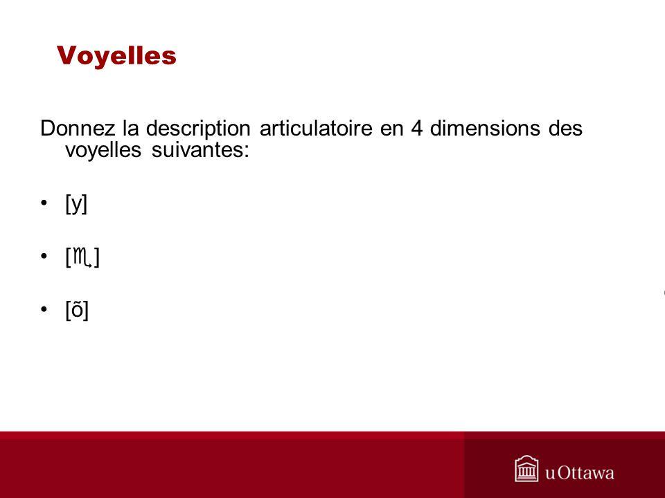 Voyelles Donnez la description articulatoire en 4 dimensions des voyelles suivantes: [y] [] [õ]